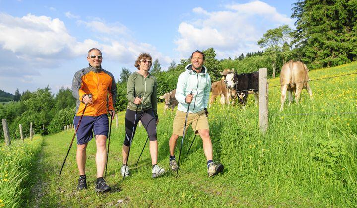 Randonneurs avec des bâtons de randonnée