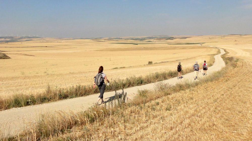 Image Chemins de Saint-Jacques : randonnée de Burgos à León