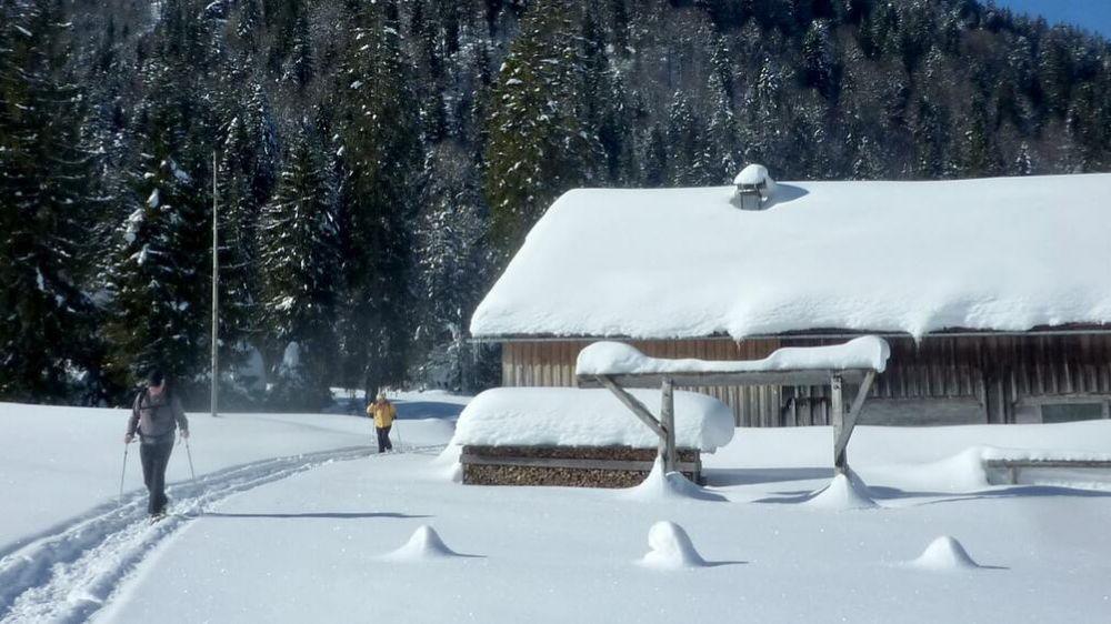 Image Bregenzerwald : raquettes et remise en forme dans l'ouest autrichien