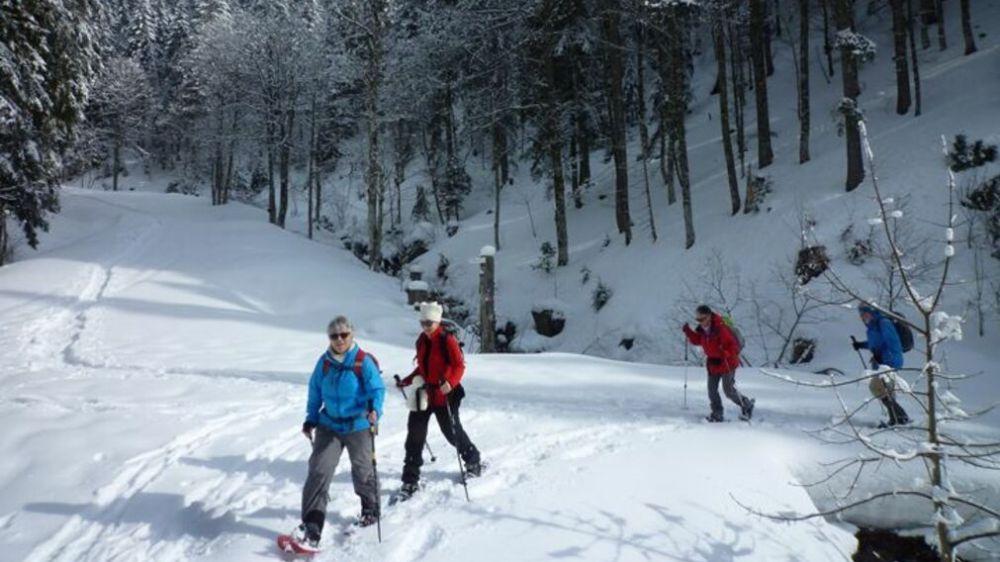 Image Villages et Sommets de la Haute Forêt Noire