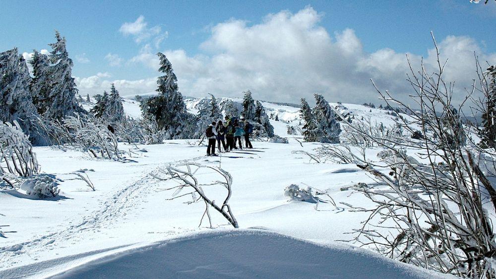 Image Balcons des Vosges Cristallines