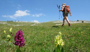 Qu'emporter avec soi en randonnée ?