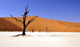 Voyage à pied : Namibie, terre de contrastes