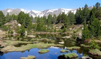 Les étangs du Carlit