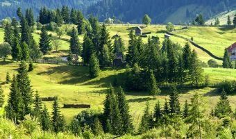 Voyage à pied : Roumanie : Carpates : balade au pays de Dracula