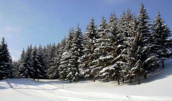 Le Jura franco-suisse en hiver