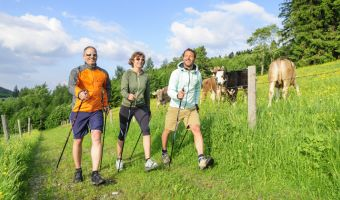 Marche nordique dans le Tyrol