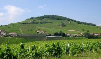 Le mont Brouilly dans le Beaujolais
