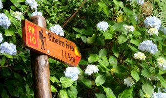 Panneau de randonnée sur Madère