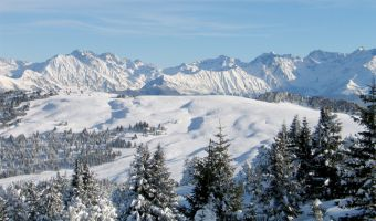 Paysage de la Chartreuse en hiver
