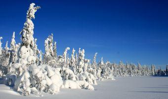 Paysage enneigé de la Laponie, Felltrek