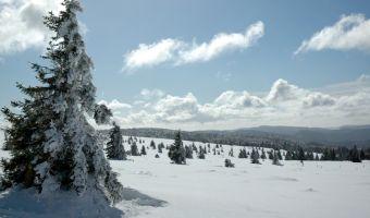 Voyage à la neige : Balcons des Vosges Cristallines