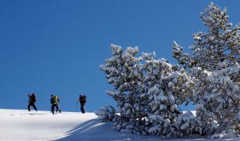 Randonnée en raquettes sur l'alpage de la Molière dans le Vercors