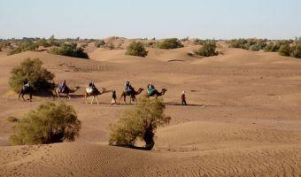 Réveillon du Nouvel An au Maroc
