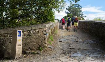 Randonnée à Furelos sur le Camino francés, Galice