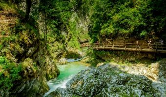 Randonnée dans les gorges de Vintgar