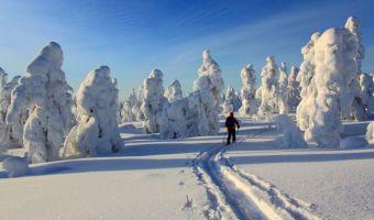 Felltrek, la Laponie sauvage