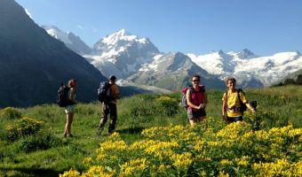 Randonneurs devant le Piz Roseg en Suisse