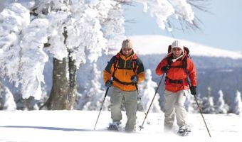 Voyage à pied : Villages et Sommets de la Haute Forêt Noire