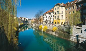 Rivière Ljubljanica en Slovénie