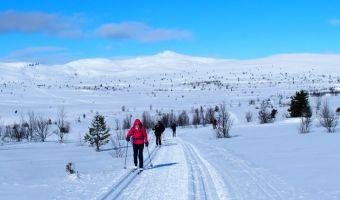 Ski de fond classique à Venabu