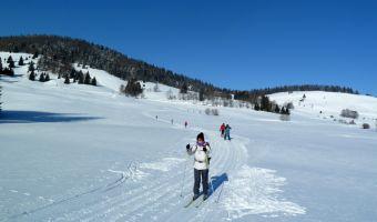 Ski de fond en Forêt Noire
