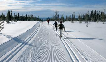 Ski de fond à Sjusjøen