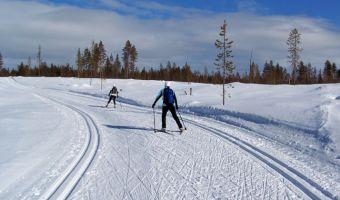 Ski de fond à Levi
