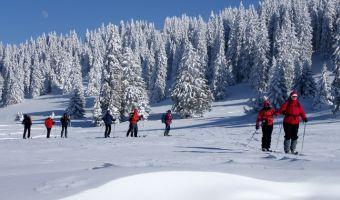 Ski de randonnée nordique sur les crêtes du Jura