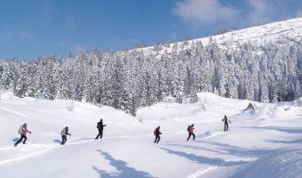 Ski de randonnée nordique sur les crêtes du Vercors