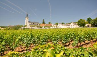 Vignes dans le village d'Aloxe-Corton