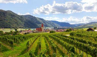 Vignes et Villages au fil du Danube, au cœur de la Wachau