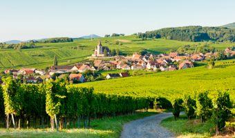 Voyage à pied : Marche nordique et villages d\'Alsace