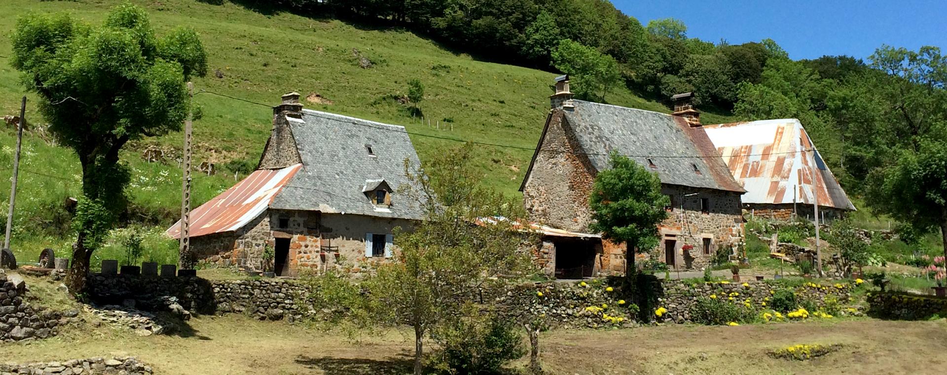 Voyage à pied : Auvergne : au cœur des volcans du Cantal