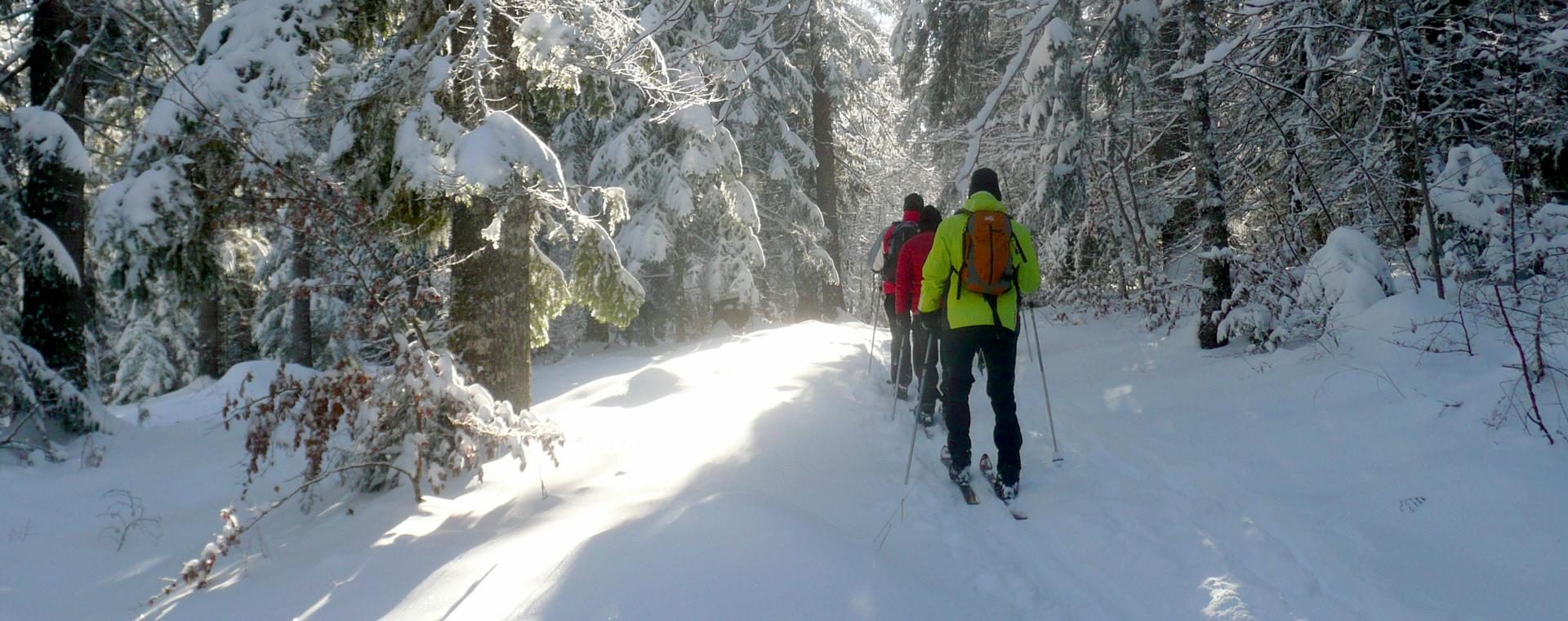 Image Vercors et Oxygène, version duo ski