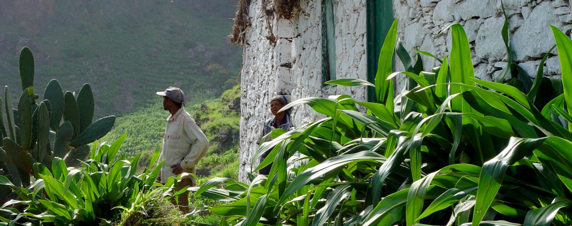 Voyage à pied Cap-Vert : Santo Antão et Mindelo