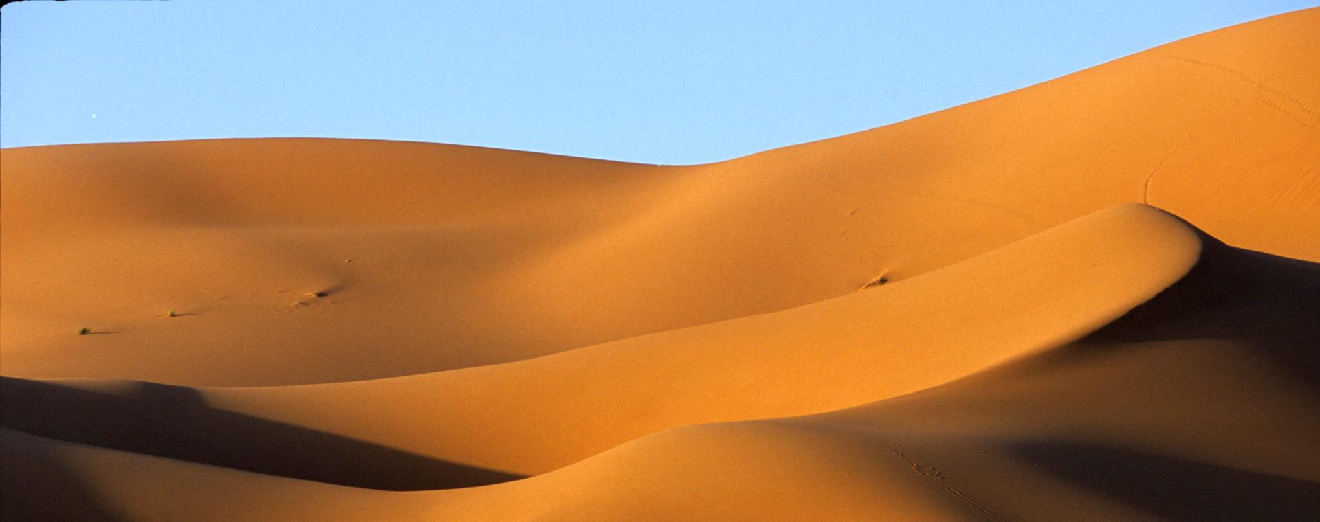 Voyage à pied : Dunes et Oasis du Sud marocain