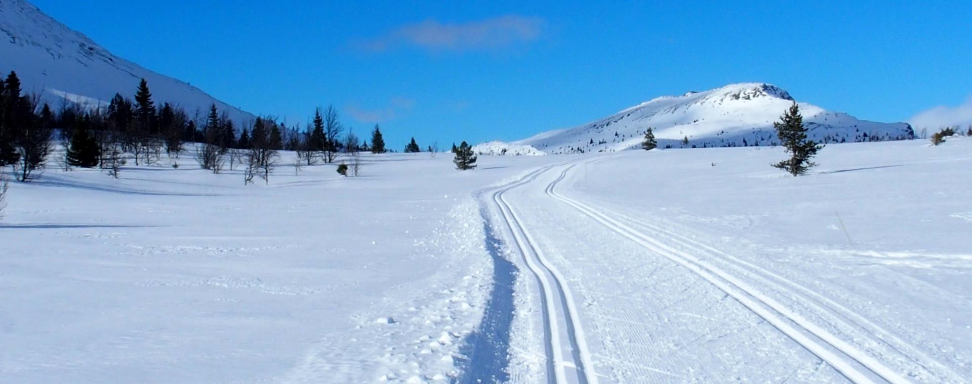 Image Séjour ski de fond à Venabu