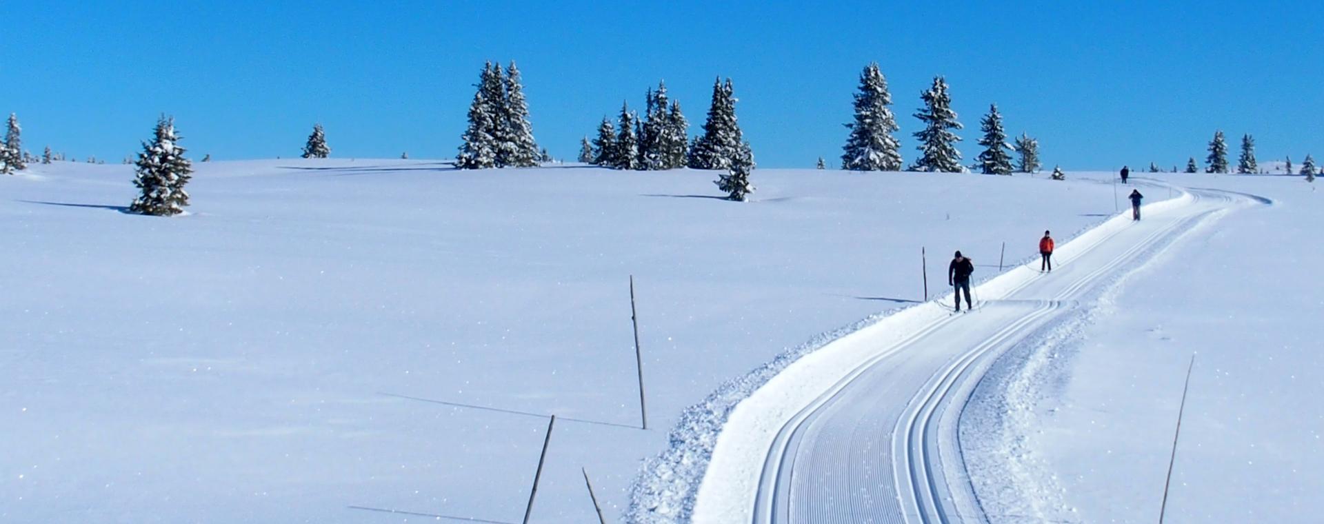 Image Séjour ski de fond à Golsfjellet