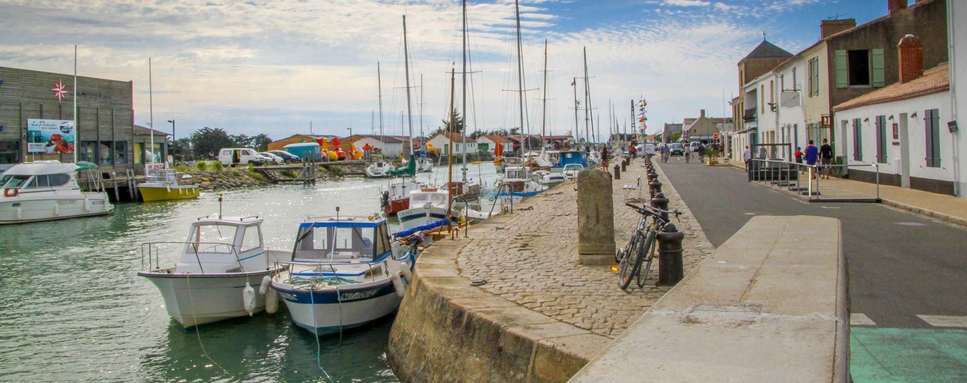 Image La Côte vendéenne et ses îles