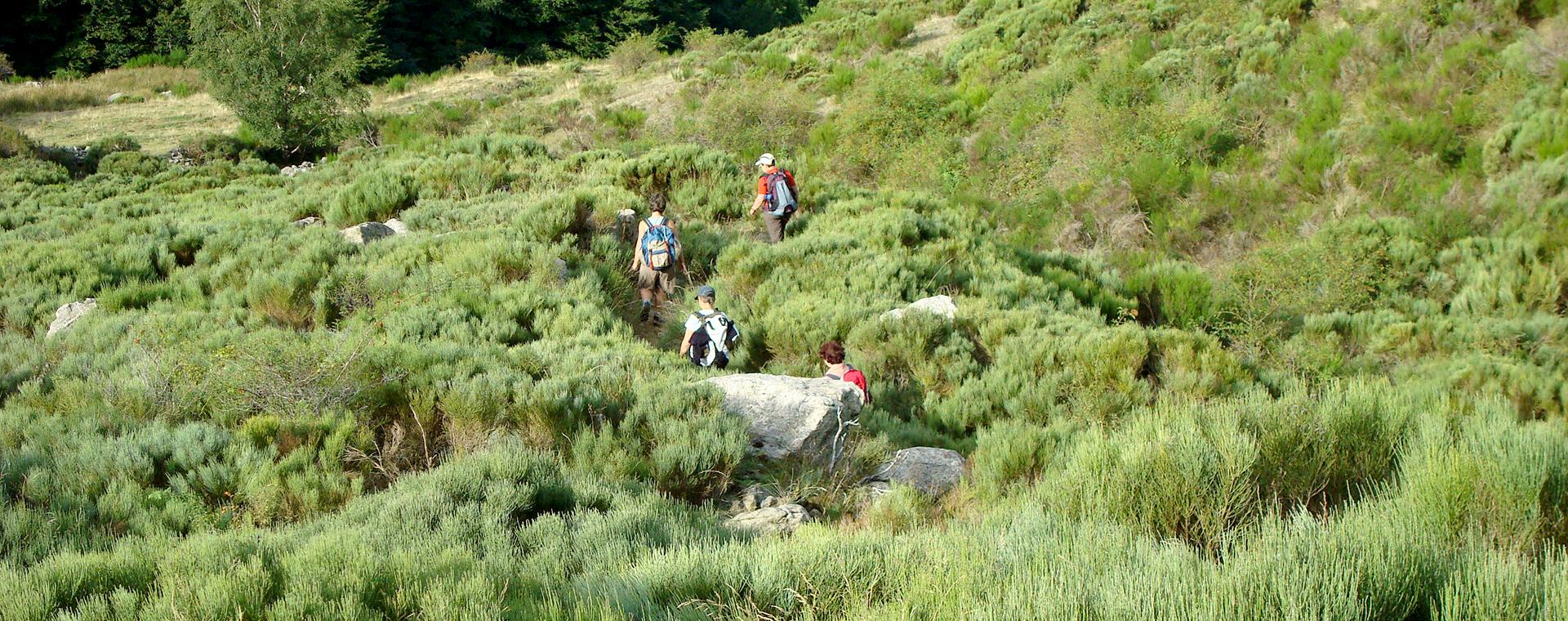 Image Parc naturel des Monts d'Ardèche, Retrouvance®