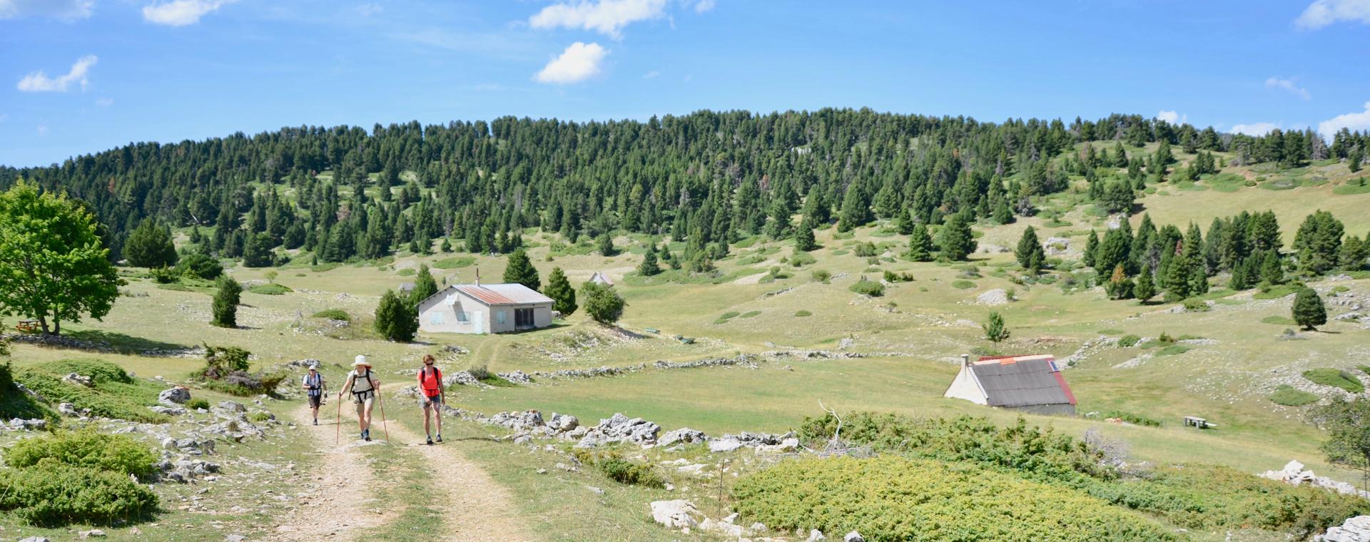 Voyage à pied : Tour des hauts plateaux du Vercors et du mont Aiguille