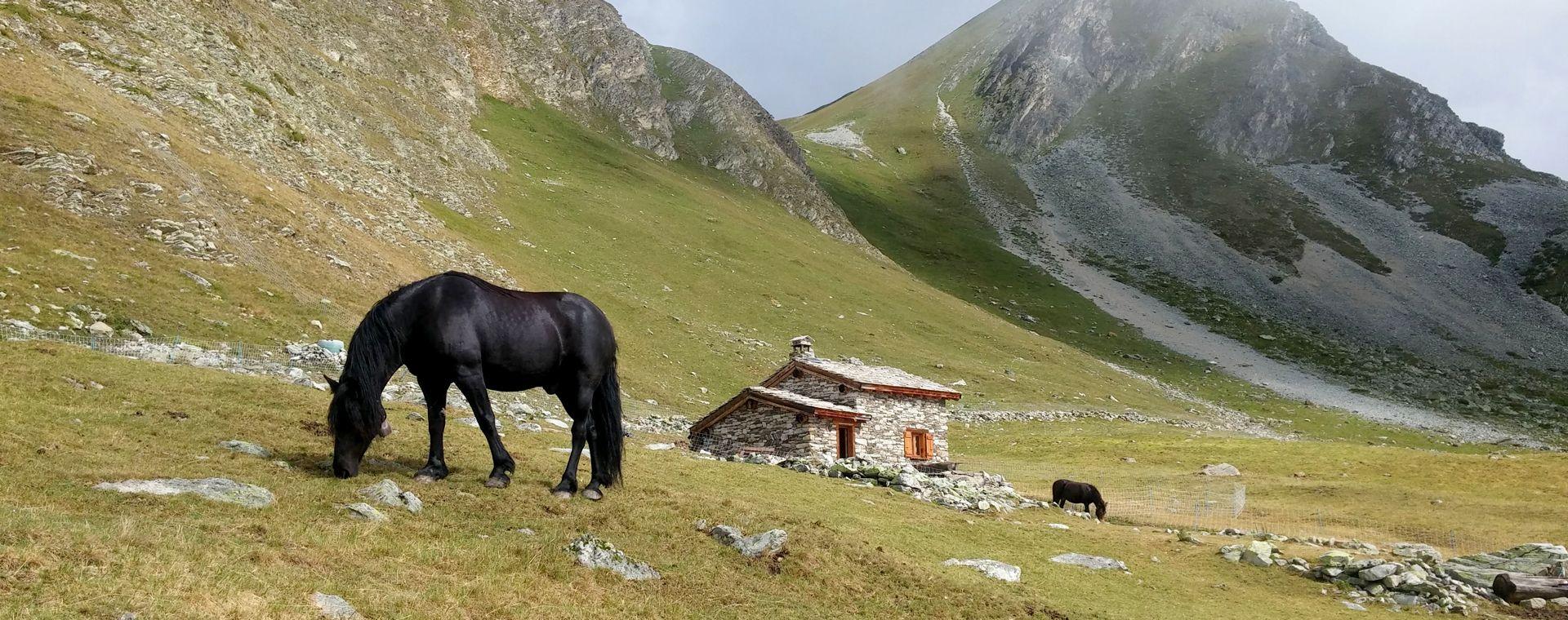 Image Traversée de la Vanoise