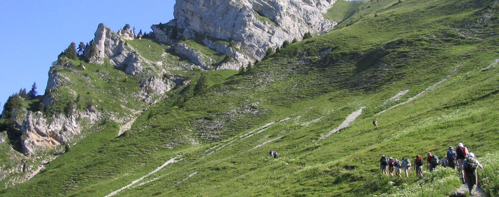 Image Tour du parc naturel de la Chartreuse en gîte