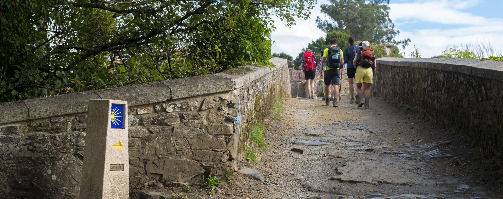 Image Chemins de Saint-Jacques : randonnée de León à Saint-Jacques-de-Compostelle