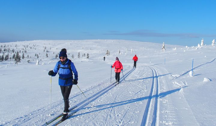 Ski de fond à Kiilopää en Laponie finlandaise