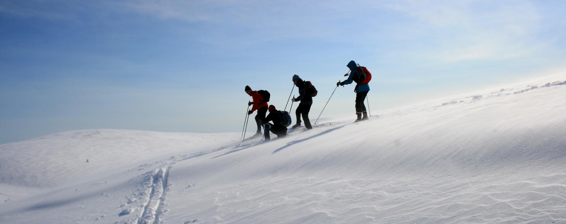 Voyage à la neige : Felltrek, Laponie finlandaise