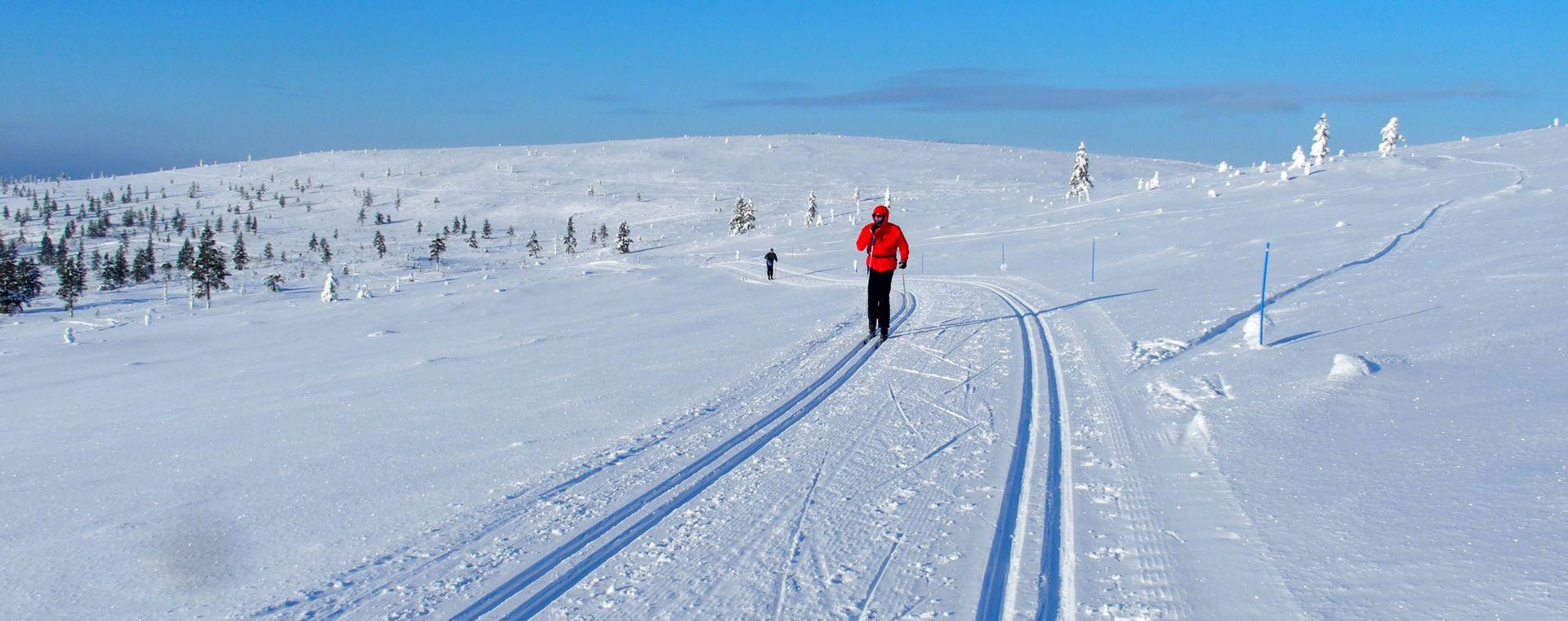 Image Laponie finlandaise : Saariselkä