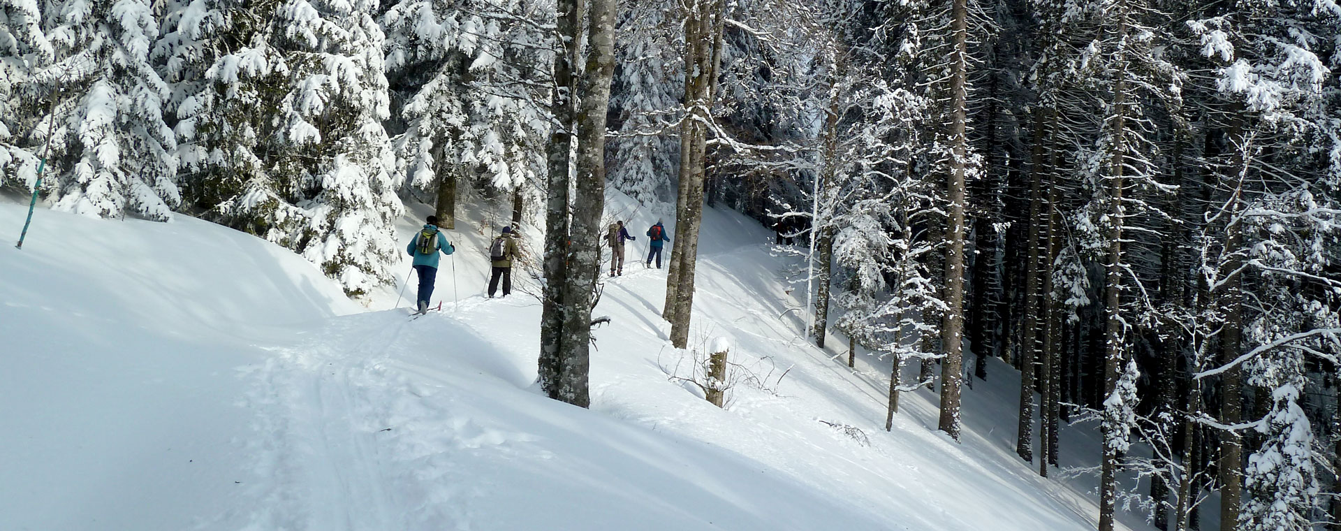 Image Traversée de la Haute Forêt-Noire à ski de fond