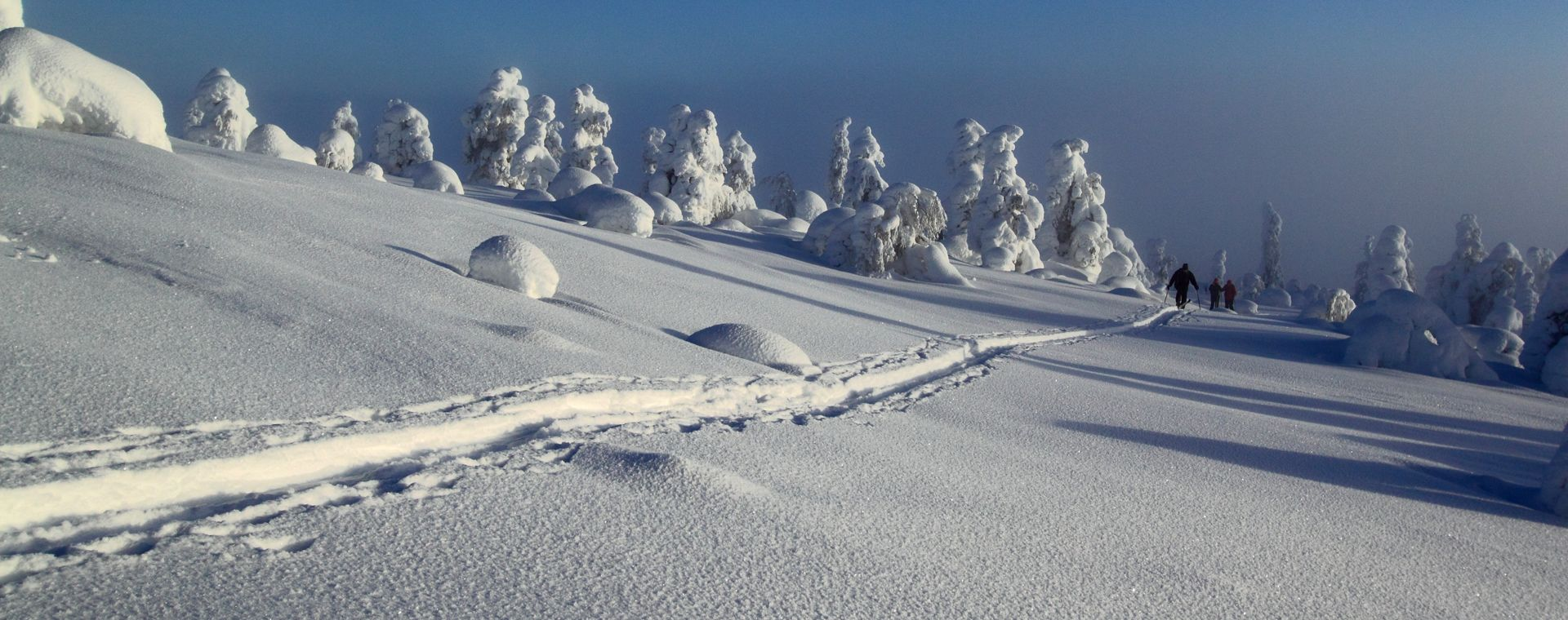 Image Felltrek, la Laponie sauvage